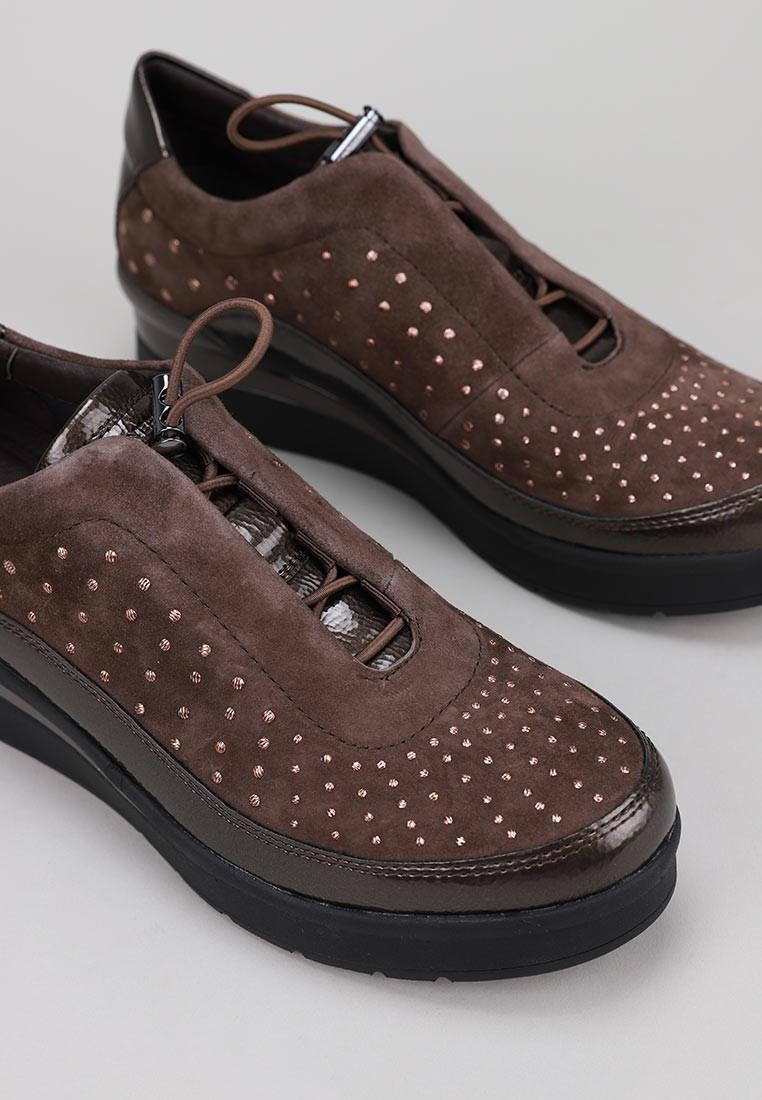 stonefly-213021-marrón